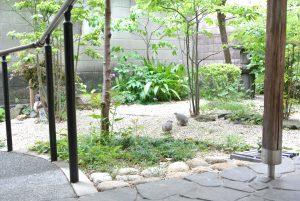 千代田ヴィレッジ中庭の鳩