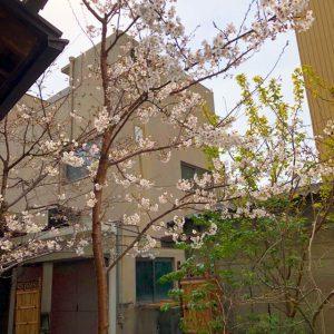 名古屋コスプレスタジオ和風